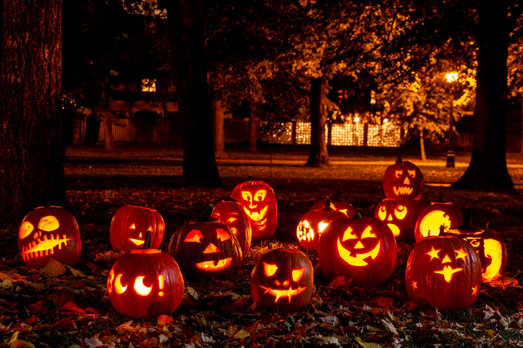 Halloween sprüche gruselig deutsch